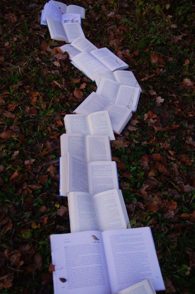 Meet Maya AI walkway of books